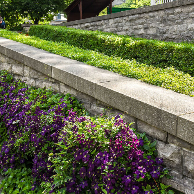 hardscaping retaining wall with flowers grass